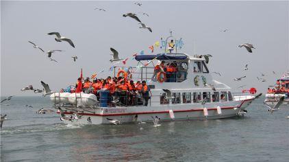 神龙仙岛 (2).jpg