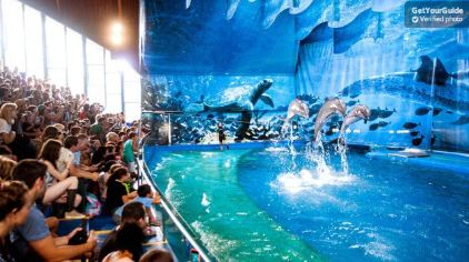 巴塞罗那动物园1.jpg