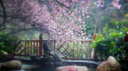 黄山温泉 (4).jpg