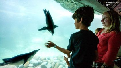 巴塞罗那动物园2.jpg