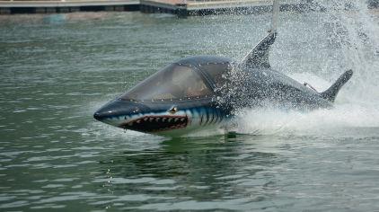 鲨鱼挺2.jpg