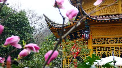 黄山温泉 (5).jpg