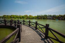 上海鲜花港-上海-克克克里斯