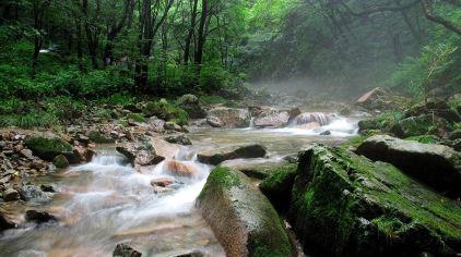 绿石谷5.jpg