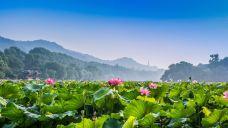 杭州-西湖7-杭州-冯杰