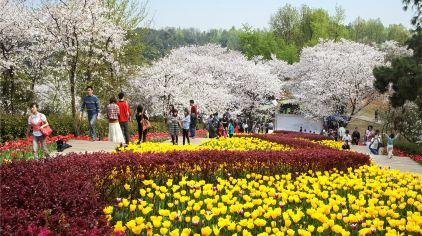 湖南省森林植物园1.jpg