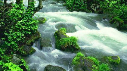 绿石谷2.jpg