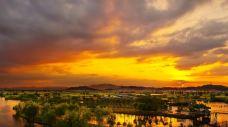 白塔湖国家湿地公园-诸暨-AIian
