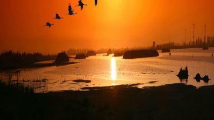 腾湖日出2.jpg