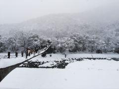 日本名古屋一日游,享受日本真正的乡村之旅