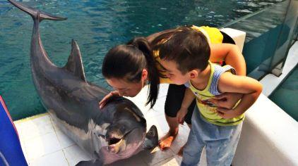 曼谷野生动物园3.jpg