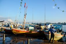 尼甘布中心鱼市场-尼甘布-尊敬的会员