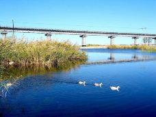 乌伦古湖-阿勒泰-AIian