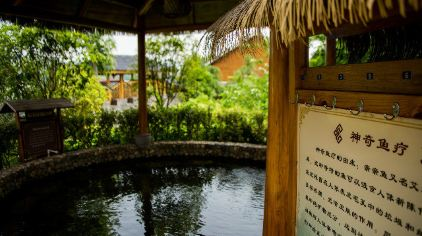 丽景温泉度假村 (10).jpg
