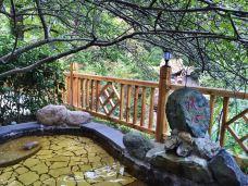 黄山温泉-黄山风景区-286****425