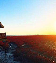 盘山游记图文-一场说走就走的旅行 4天3晚 北京-笔架山-红海滩-兴城古城带娃自驾游