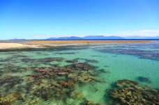 澳大利亚。大堡礁2-大堡礁-昆士兰-蔡常武
