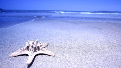 北海银滩 (8)