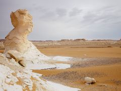 开罗周边沙漠2日游