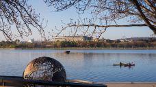 伯利.格里芬湖