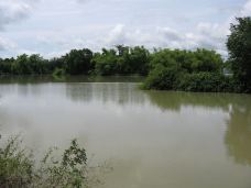 800px-Small_Lake_in_Serei_Saophoan_District_Banteay_Meanchey-诗梳风-兔子在路上奔跑