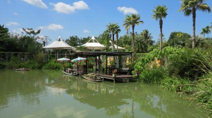普吉岛植物园 (5)