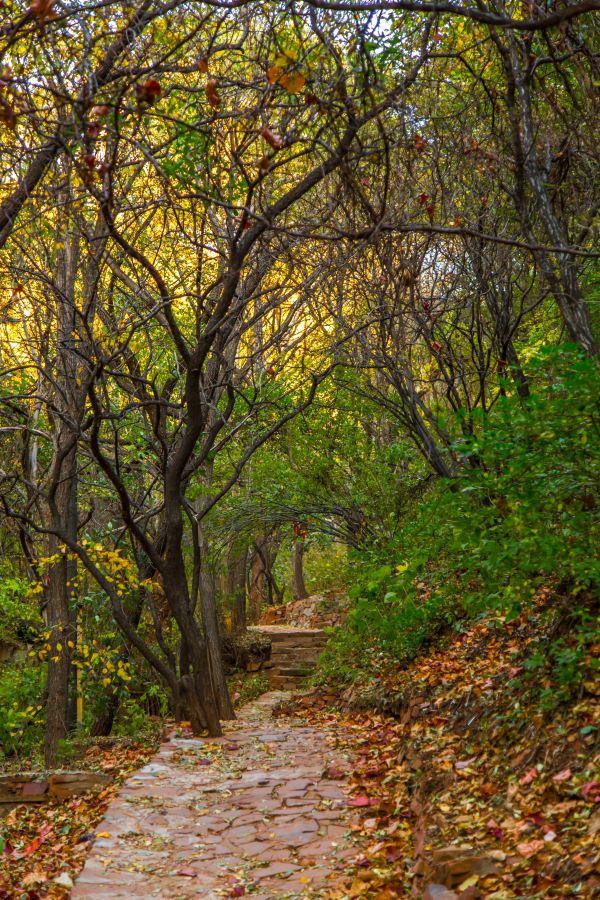 綠野仙谷是翠楓山自然風景區主要游覽景點之一,流程全長4.
