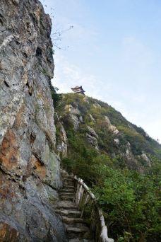 云阳国家森林公园-茶陵-林下清风1989