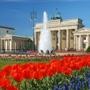 The best of Berlin in one single tour