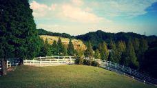 神户市立六甲山牧场