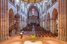 巴塞尔大教堂-巴塞尔-doris圈圈