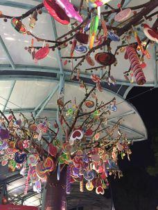 Candylicious糖果店-新加坡-sophiehdd
