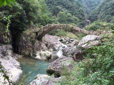 龙湾潭国家森林公园-永嘉-苦荞茶