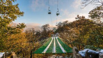 天门山森林观光缆车 (1)