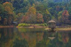 千岛湖龙川湾-千岛湖-doris圈圈