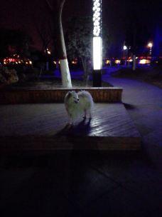 白河湿地公园-新野-_WeCh****24000