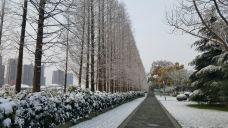 滨河公园-太仓-m82****25