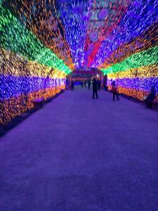 鄢陵国家花木博览园-鄢陵-_CFT01****7989280