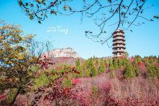红叶谷-济南-张小炸