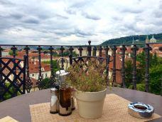 Villa Richter-布拉格-当地向导当地向导~优优