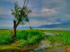 大理西湖-洱源-wula拉