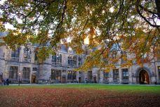 格拉斯哥大学-格拉斯哥-羊小宝Rainbow