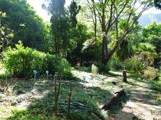 草药香料园-圣淘沙岛-用户3436073