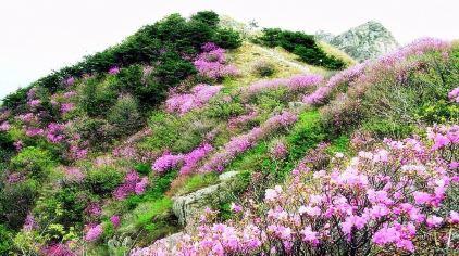 牙山国家森林公园9.jpg