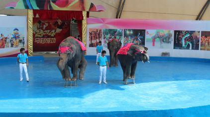 香市动物园2.jpg