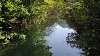 金刚台西河生态旅游区 (3).jpg
