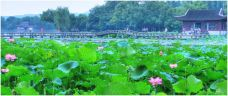 记忆西湖-西湖-杭州-chinadesk1