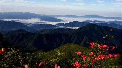 浏阳大围山国家森林公园1.jpg