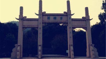 古樟植物园.jpg