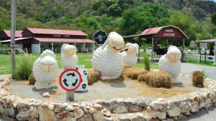 瑞士绵羊农场.jpg